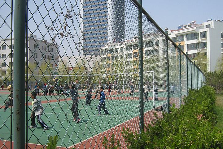 排球场围网案例