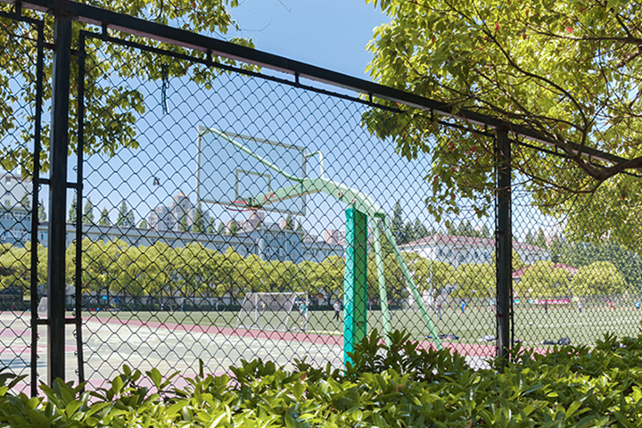 篮球场围网案例